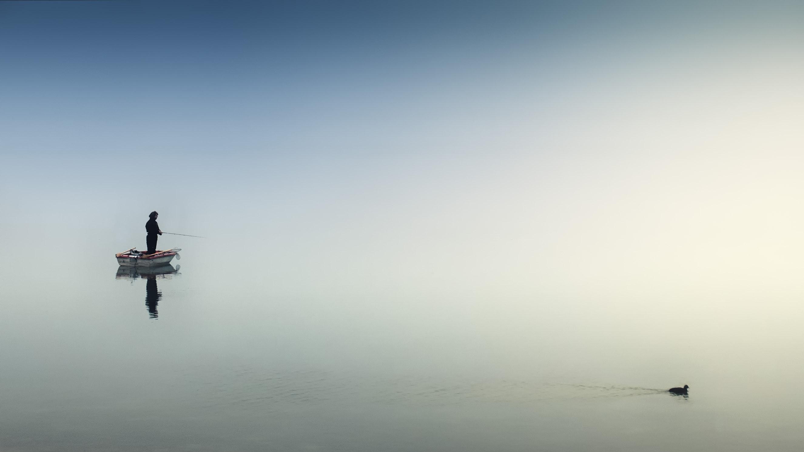 boat-daytime-duck-1105386